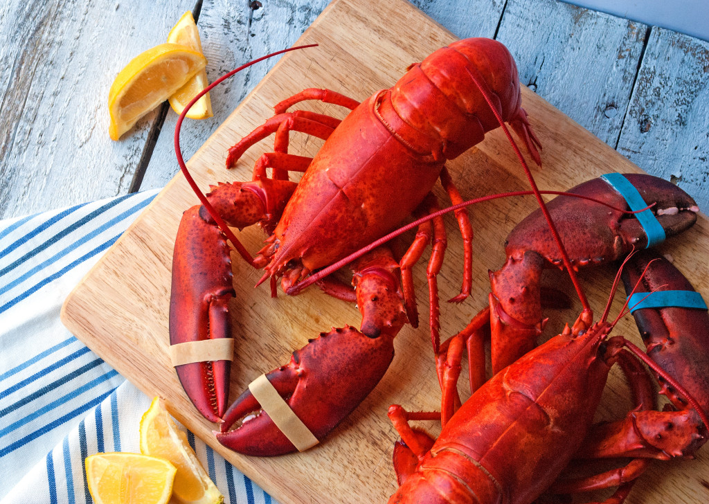 How to Steam and Pick a Live Lobster