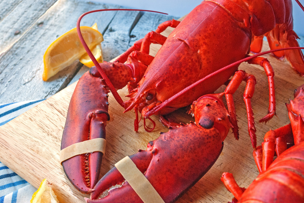 How to Steam a Live Lobster